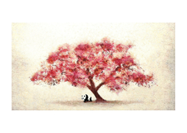 Cherry Blossom and Panda