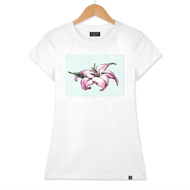 Pink Hibiscus Island Flower