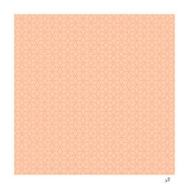 Original Handmade Pattern - Coral Box