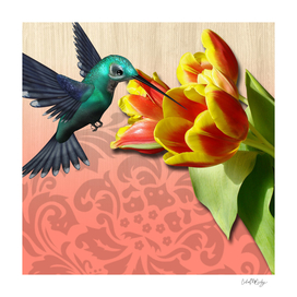 Hummingbird & Beautiful Tulip Flowers