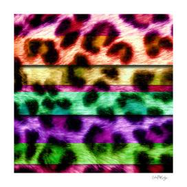 Multicolor Leopard Print Colorful Stripes