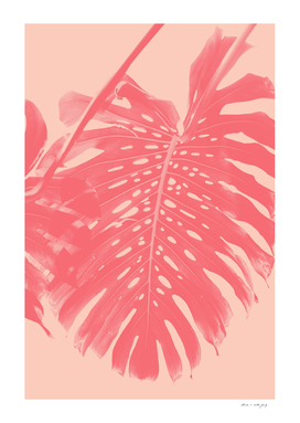 Monstera Finesse #2 #tropical #decor #art