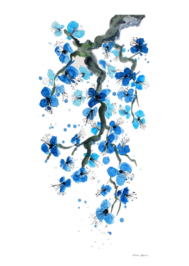 Blue Japanese Blossoms