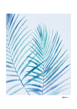 Coastal Palm Fronds