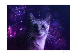 Galaxy Cute Cat