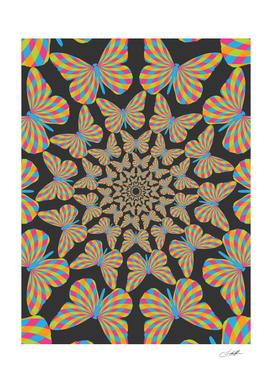 Butterfly Pattern 3