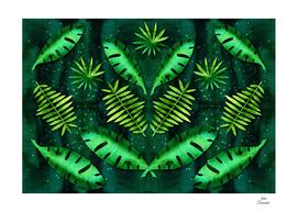 Deep Emerald Forest