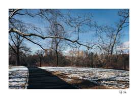 Rumsey Playfield of Central Park with snow in winter