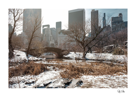 Gapstow Bridge of Central Park with snow in winter in color