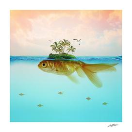 Goldfish Island II
