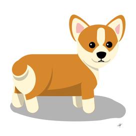 Corgi dog puppy