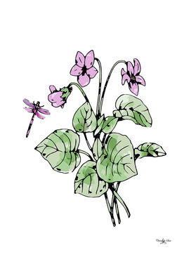 Violets and dragonfly