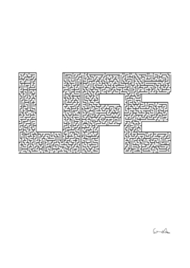 life maze uncertainty lost puzzle