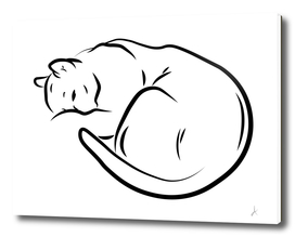 Sleeping cat black