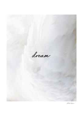 Dream Feather Print