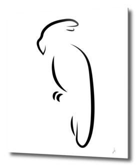 Minimalistic parrot