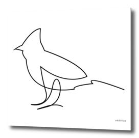 Fella - single line bird art