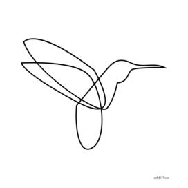 Colibri - one line art