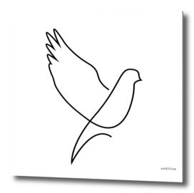 dove - single line art