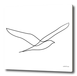 Freedom - single line bird art