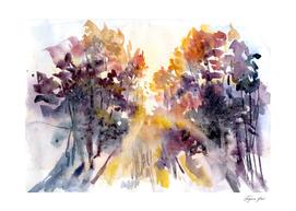 follow season trees