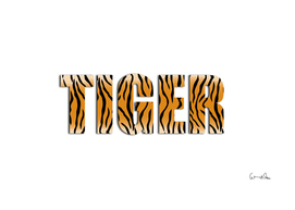 Tiger abstract animal art pattern skin