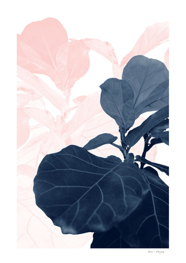 Blush Blue Fiddle Leaf Dream #1 #tropical #decor #art