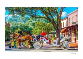 Carriage Tours Savannah-2