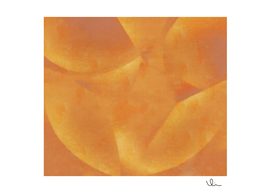 Mature Mango