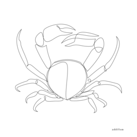 crab - one line art