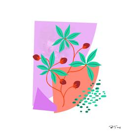 Mild plant
