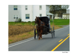 Lancaster County Going to Market
