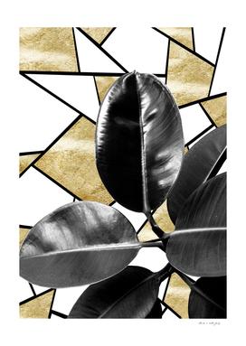 Ficus Elastica Geo #2 #tropical #foliage #decor #art