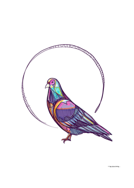 Pigeon ink digital vector illustration