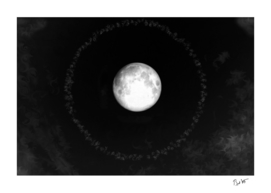 Moon Halo (Cloud series #17)
