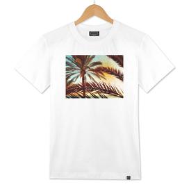 tropical n.1