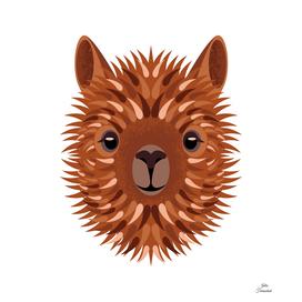 Alpaca brunette portrait