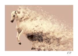 La poudre du cheval