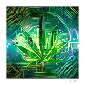 Electronic Leaf