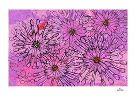 African Daisy, Cape Daisies, Pink Flowers, Floral Art