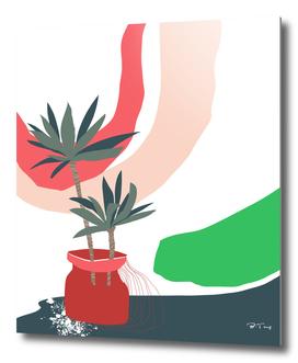 window sill plants