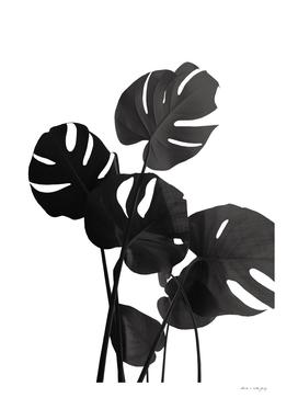 Monstera Leaves Black & White Vibes #1 #minimal #decor #art