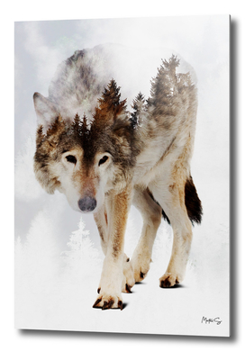 Wolf & Forest 5