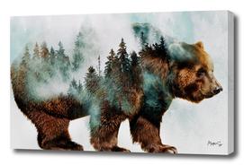 Bear & Forest 2