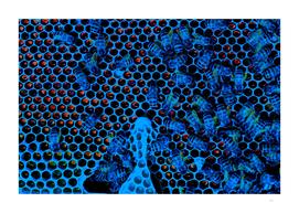 Blue bees making magma