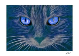 Le chat brillant 3