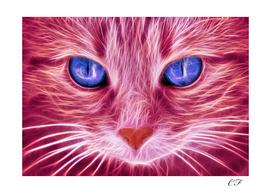 le chat brillant 2