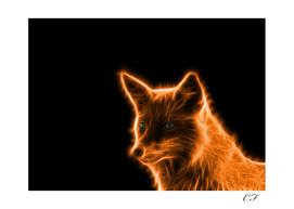 le renard brillant