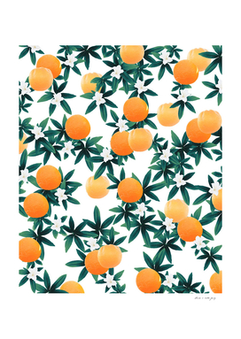 Orange Twist Flower Vibes #2 #tropical #fruit #decor #art