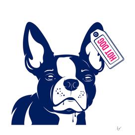Dog French bulldog Hot Dog